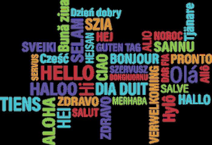 ICO Languages
